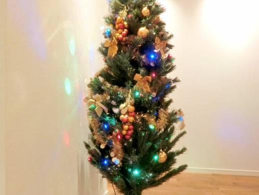 クリスマスの季節[半田展示場より]
