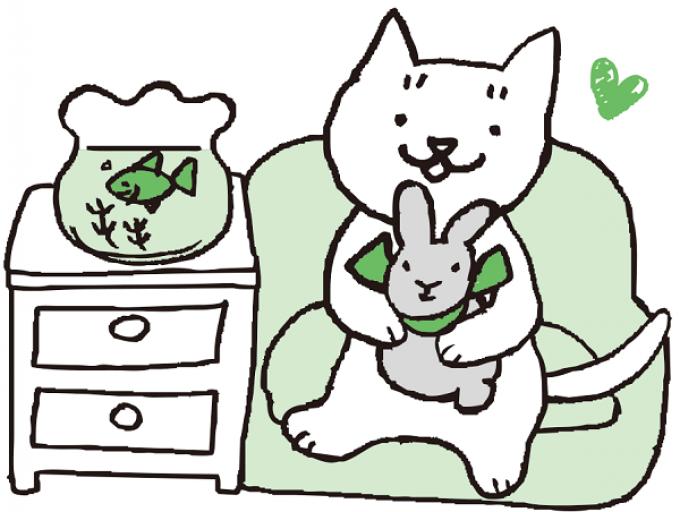 【日替わり縁日】おもちゃの金魚すくい